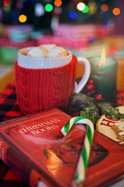 Christmas image of book and hot chocolate by Jill Wellington from Pixabay